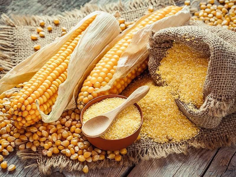 Corn Meals
